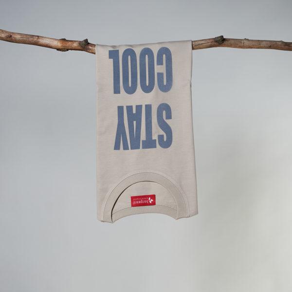 \tsclient- Produkte Shop DatenbankPiecesShirtsDesert DustT-Shirt-men-nude_2443.jpg